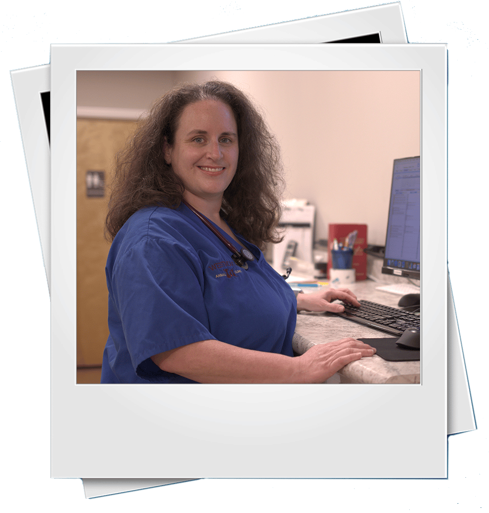 Dr Lisa Matagrano Polaroid